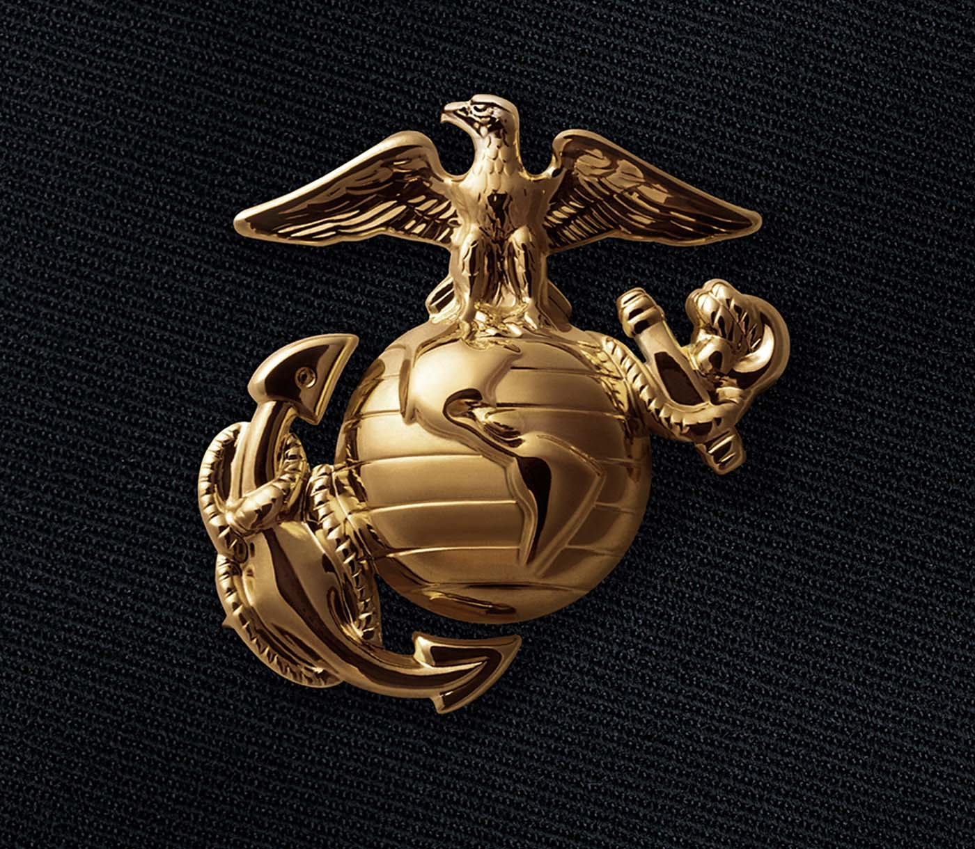 The Eagle Globe and Anchor emblem of an enlisted Marine.